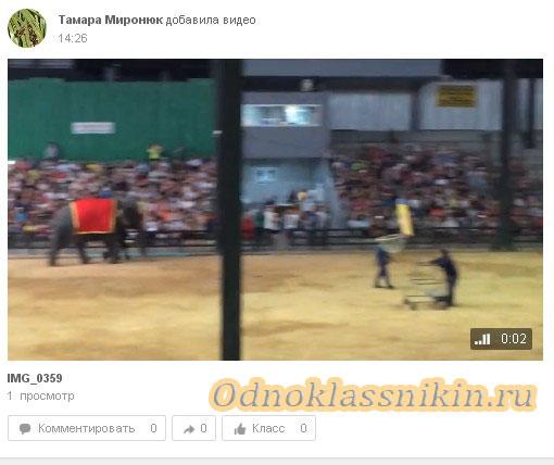 Видео в ленте