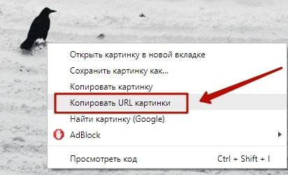 Как перенести фото из скайпа в Одноклассники 10-min