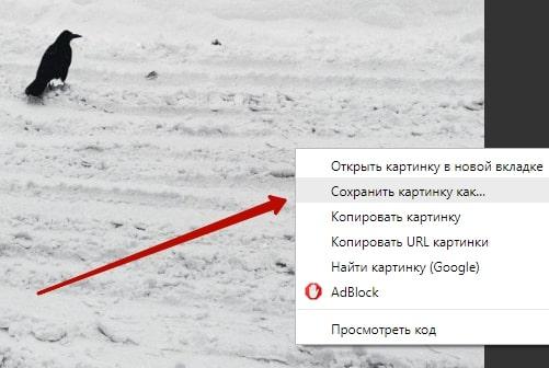 Как перенести фото из скайпа в Одноклассники 8-min